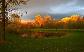 Papel de parede Pequeno Lago no Outono