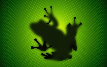 Papel de parede Sombra de Sapo na Folha para download gratuito. Use no computador pc, mac, macbook, celular, smartphone, iPhone, onde quiser!