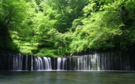 Papel de parede Pequena Cachoeira Na Floresta