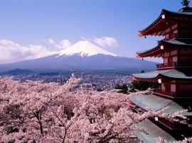 Papel de parede Vista do Monte Fuji