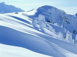 Papel de parede Descida de Neve