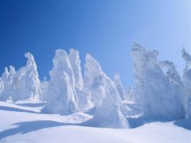 Papel de parede Neve Ao Sol