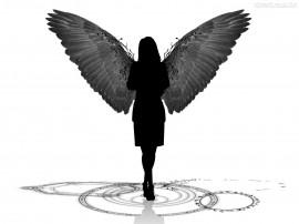 Papel de parede Anjo – Negro