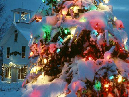 Papel de parede Árvore de Natal – Iluminada para download gratuito. Use no computador pc, mac, macbook, celular, smartphone, iPhone, onde quiser!