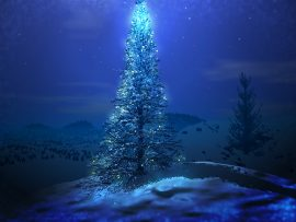 Papel de parede Árvore de Natal – Mágica