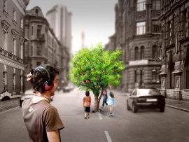Papel de parede Árvore na Cidade