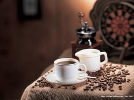 Papel de parede Momento do Café