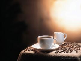Papel de parede Café e Leite