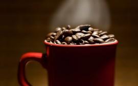 Papel de parede Caneca com Grãos de Café