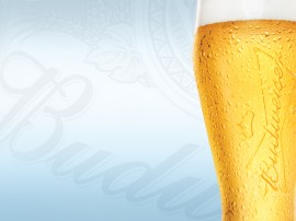 Papel de parede Cerveja Budwaiser
