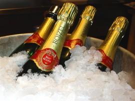 Papel de parede Champagne – Balde