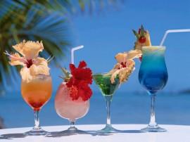 Papel de parede Drink – Tropicais