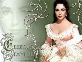 Papel de parede Elizabeth Taylor – Sucesso