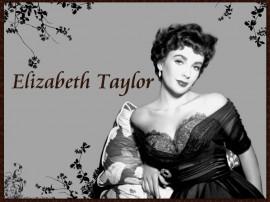Papel de parede Elizabeth Taylor – Hollywood