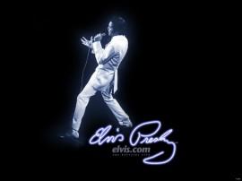 Papel de parede Elvis – Rei