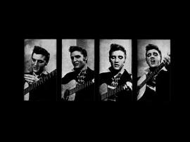 Papel de parede Elvis – Tocando