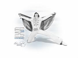 Papel de parede Elvis – 25 anos depois