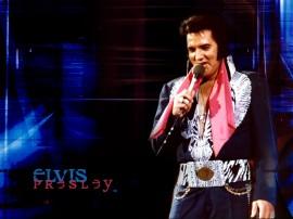 Papel de parede Elvis – Símbolo