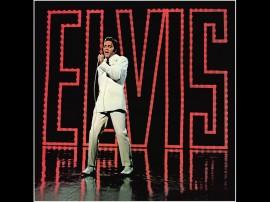 Papel de parede Elvis – Super Show
