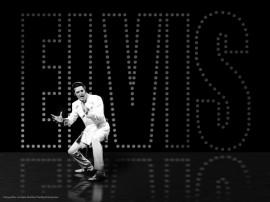 Papel de parede Elvis – Show