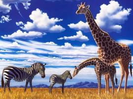 Papel de parede Girafas e Zebras