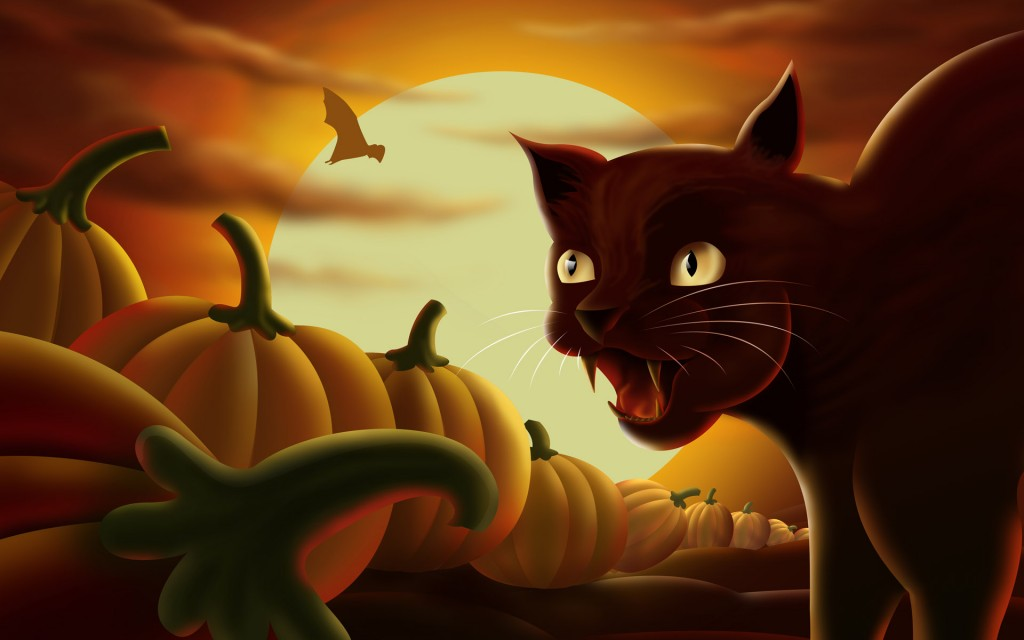 Papel de parede Gato na Noite de Halloween para download gratuito. Use no computador pc, mac, macbook, celular, smartphone, iPhone, onde quiser!