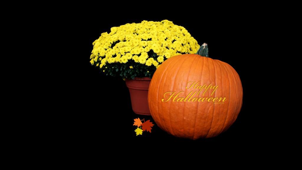 Papel de parede Tenha um Feliz Halloween para download gratuito. Use no computador pc, mac, macbook, celular, smartphone, iPhone, onde quiser!