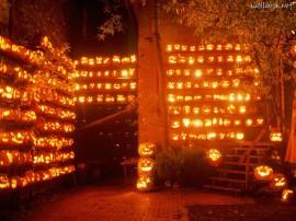Papel de parede Muitas Lanternas de Halloween