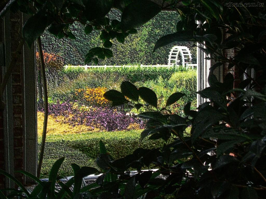 Papel de parede Janela – Jardim Escondido para download gratuito. Use no computador pc, mac, macbook, celular, smartphone, iPhone, onde quiser!