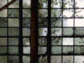 Papel de parede Janela – Suja