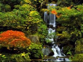 Papel de parede Japão – Jardim