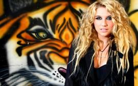 Papel de parede Kesha: Tigre