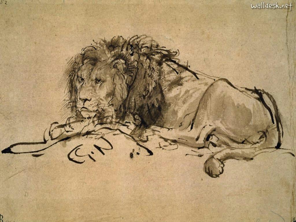 Papel de parede Leão – Rembrandt para download gratuito. Use no computador pc, mac, macbook, celular, smartphone, iPhone, onde quiser!