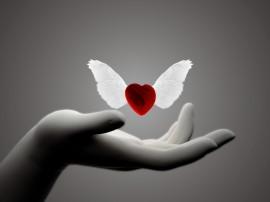 Papel de parede Coração com Asas