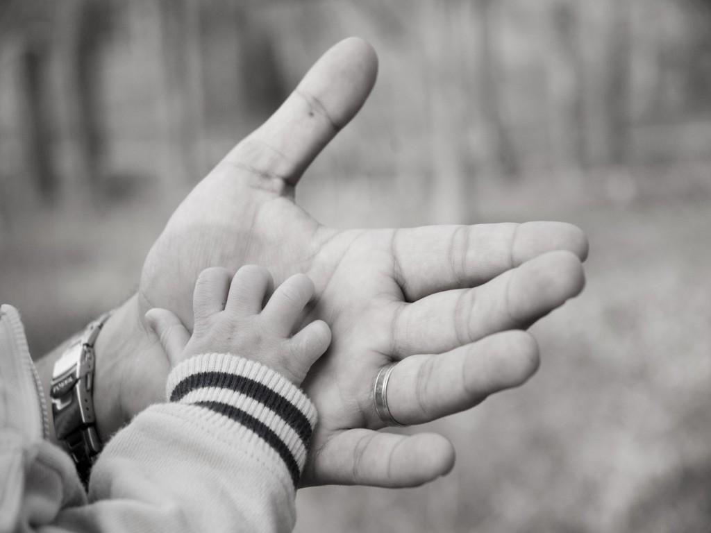 Papel de parede Mão do Pai e do Filho para download gratuito. Use no computador pc, mac, macbook, celular, smartphone, iPhone, onde quiser!