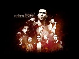 Papel de parede Maroon 5: Levine
