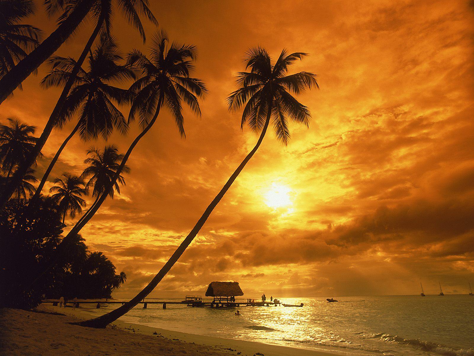 Papel de Parede Pôr-do-sol na Praia  Paradisíaco Wallpaper para ... 50f42fcb9d