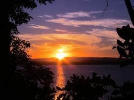 Papel de parede Pôr-do-sol na Praia: Árvores