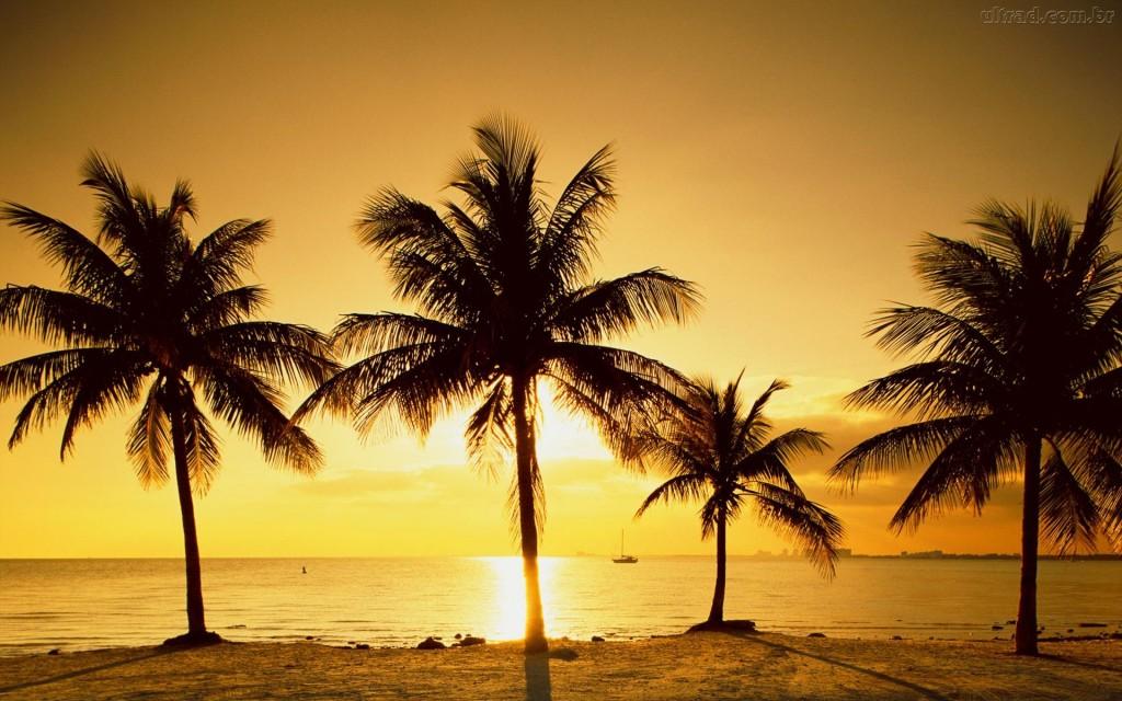 Papel de parede Pôr-do-sol na Praia: Especial para download gratuito. Use no computador pc, mac, macbook, celular, smartphone, iPhone, onde quiser!