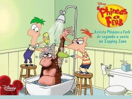 Papel de parede Phineas e Ferb – Macaco