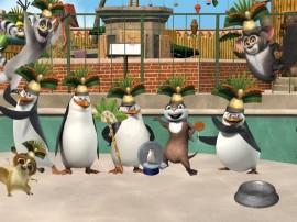 Papel de parede Pinguins de Madagascar – Dança