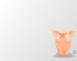 Papel de parede Desenho de Porco