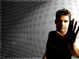 Papel de parede Ricky Martin – Legal