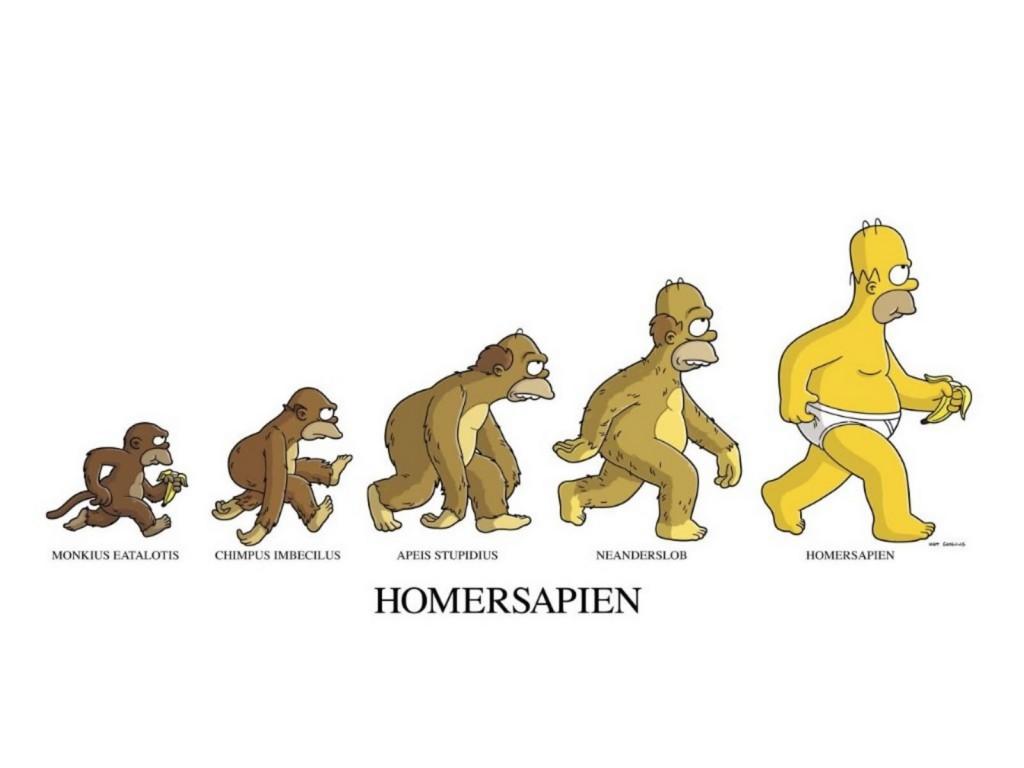 Papel de parede Os Simpsons – Evolução de Homer para download gratuito. Use no computador pc, mac, macbook, celular, smartphone, iPhone, onde quiser!