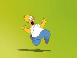 Papel de parede Os Simpsons – Loucura