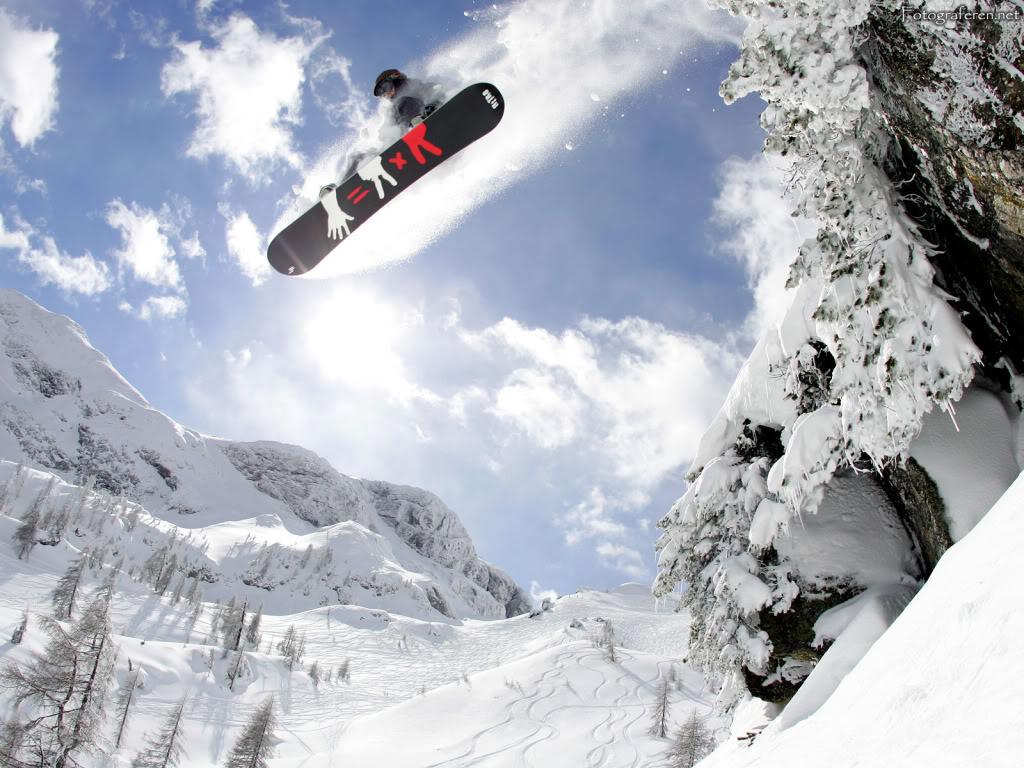 Papel de parede Snowboard – Sob as Árvores para download gratuito. Use no computador pc, mac, macbook, celular, smartphone, iPhone, onde quiser!