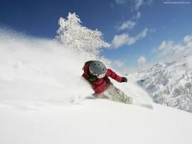 Papel de parede Snowboard – Legal