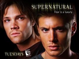 Papel de parede Supernatural – Irmãos Winchester
