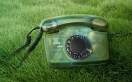 Papel de parede Telefone Transparente na Grama