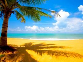 Papel de parede Verão Paradisíaco